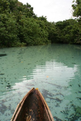 Canoe ride through the waters who you can see to the bottom. The pics don't do justice.