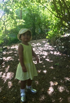 Sienna stopping to admire nature