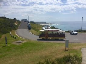 a tourist bus...